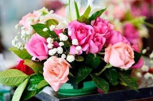 插花时花瓶和花的高度比例,遵循三个比例插出美丽花卉
