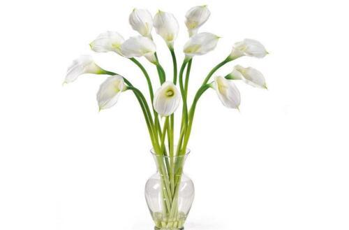 新手插花picture跟步骤,花commonly高出花瓶多少(花�康�1.5倍)
