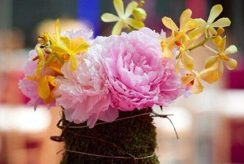 矮花瓶适合插what花,芍药/牡丹/玫瑰(花头大的花都行)