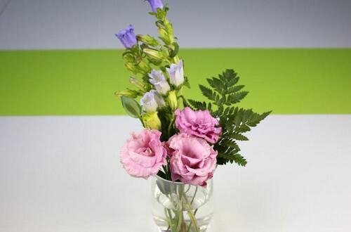 玻璃花瓶插what花好看,用玻璃瓶插野花有别样风情
