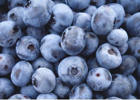 蓝莓一天吃多少为宜,一般吃6~10颗/最多不超过20颗