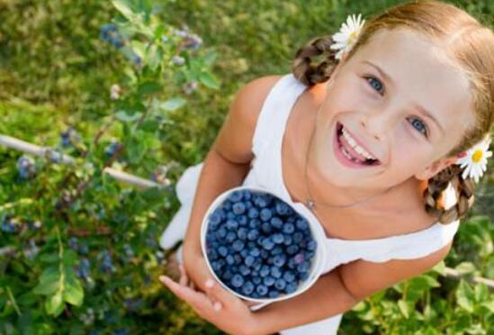 蓝莓怎么洗才干净,四种方法教你如何清洗蓝莓