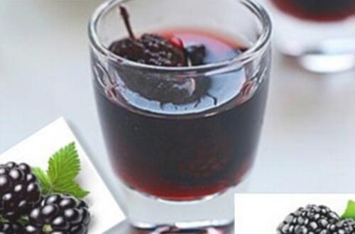 在家如何自制桑葚酒,桑葚酒的做法大全(不加酒做法)