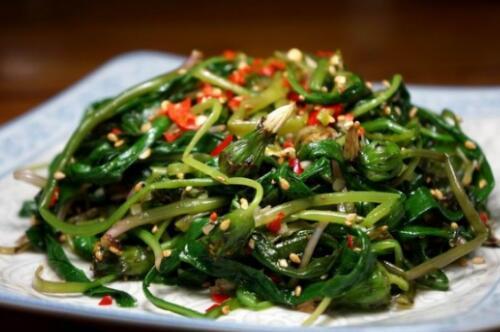 新鲜蒲公英怎么吃,新鲜蒲公英的食用方法(8种)