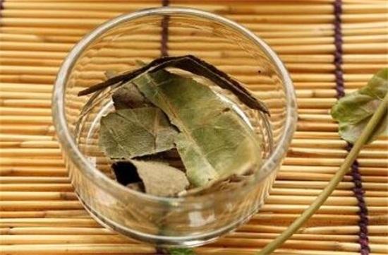 枇杷怎么吃治咳嗽化痰,盘点枇杷五种不同的吃法
