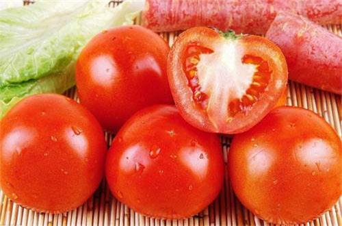 西红柿种植技术与管理,八大要点教会你种植