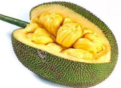 像榴莲的水果叫什么