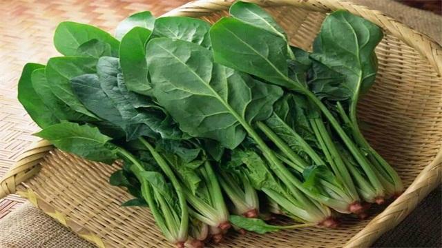 秋天有什么蔬菜