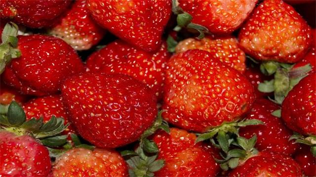 草莓的种植方法
