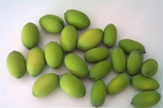 莲子一天吃几个为好,10粒最好/不超过15粒