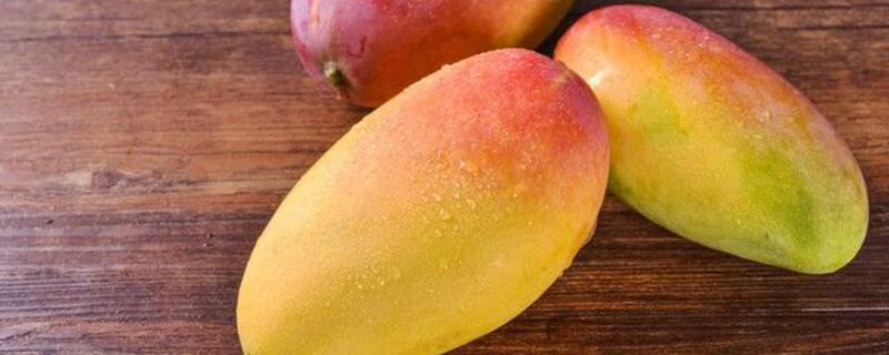 9月吃什么水果