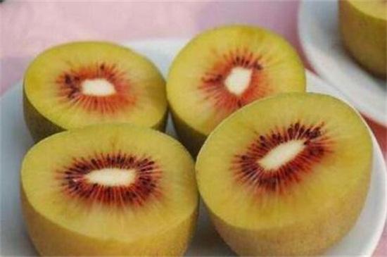 让更多消费者享受到高质量的蒲江猕猴桃