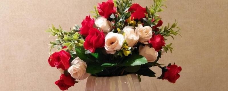 卧室养花会招桃花吗