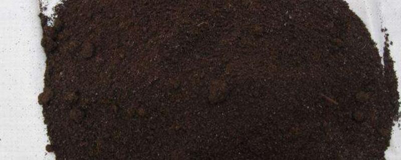 申博娱乐蚯蚓粪养花使用方法