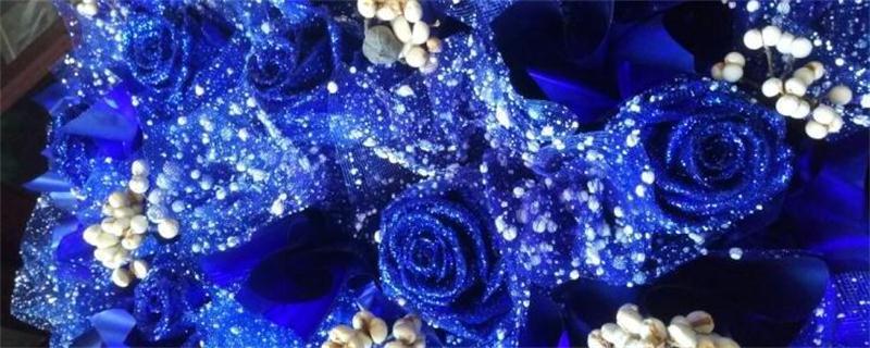 蓝色妖姬是干花吗_蓝色妖姬是玫瑰花吗