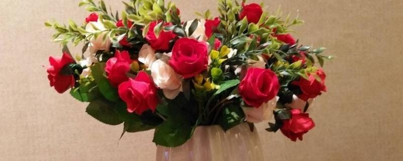 玫瑰花花期怎么延长