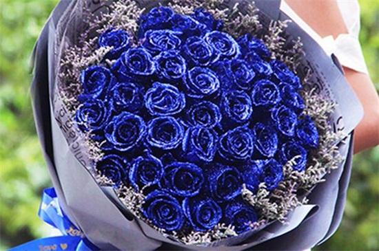 蓝色妖姬是干花吗_蓝色妖姬花语