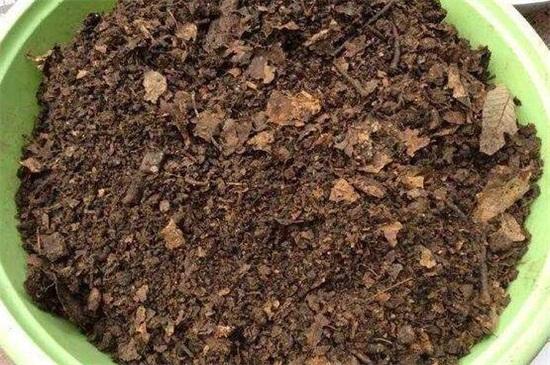 兰花土的配制方法图解,使用疏松偏酸基质养殖