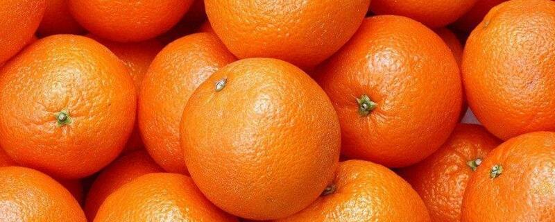 橙子是热性还是凉性