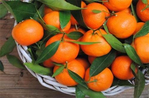 橙子不适合什么人吃,体质虚寒患有溃疡不吃