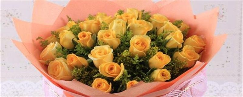 黄玫瑰的花语是什么