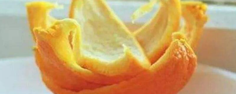 桔子皮泡水浇花的功能