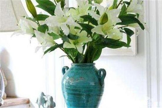 百合花插花瓶怎么养