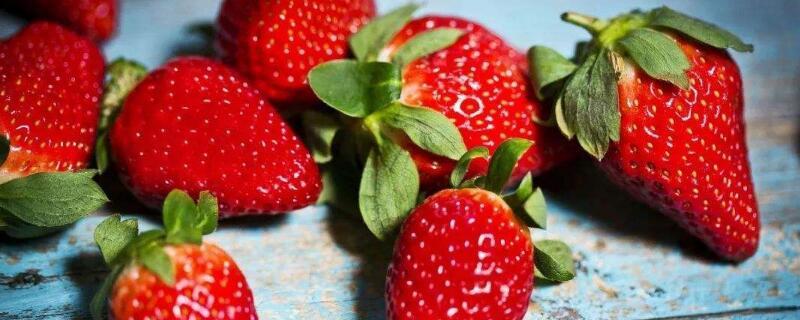 几月是吃草莓的季节