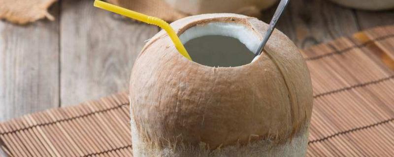 椰子热性还是凉性水果