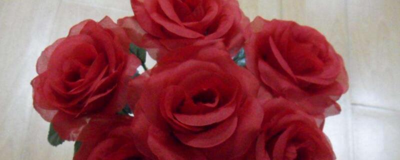 六朵玫瑰花的含义