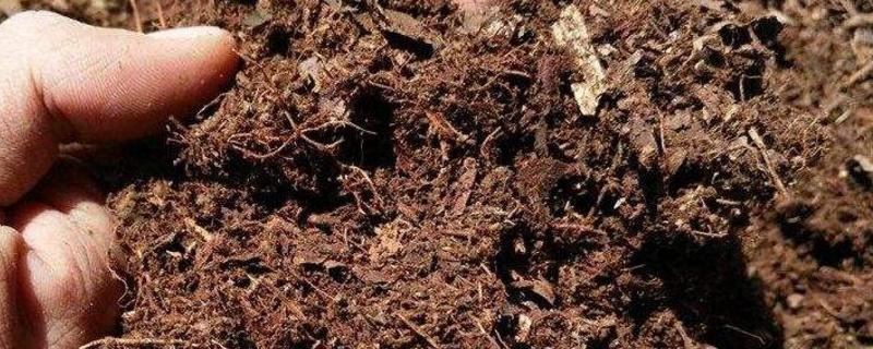 养花土的配制方法