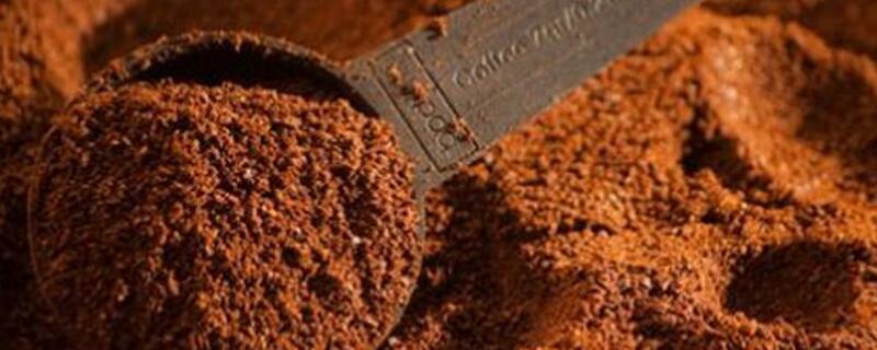 咖啡渣沤肥详解
