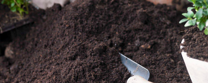 盆栽用什么土
