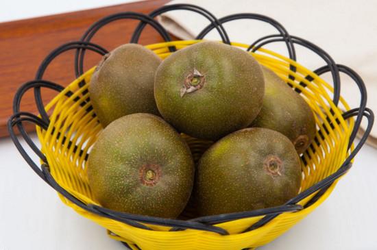猕猴桃是寒性水果吗