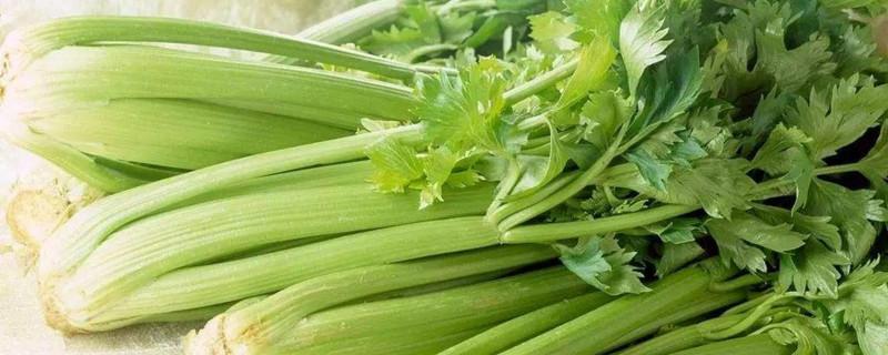 含纤维多的蔬菜和水果