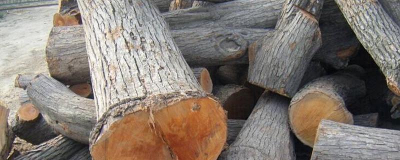 适合雕刻的木头