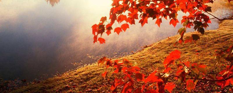 信阳红叶观赏最佳时间