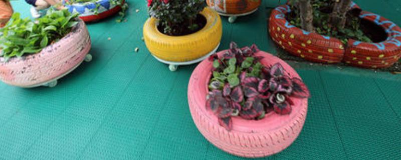 自制花盆废物利用