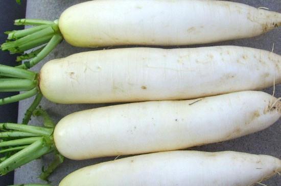 萝卜切一半埋在土里能生长吗
