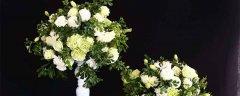 代表友谊的花
