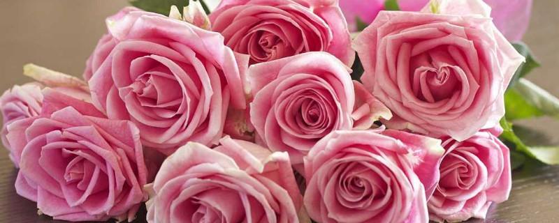 买来的玫瑰花束怎么养