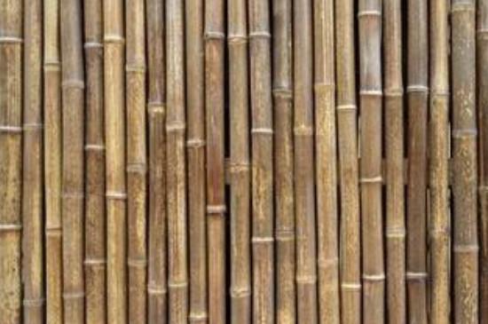 竹子变红窍门