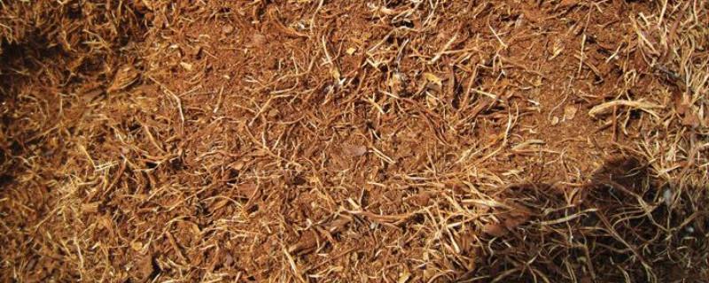 松針土的制作方法
