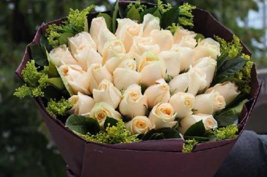香槟玫瑰花语和寓意