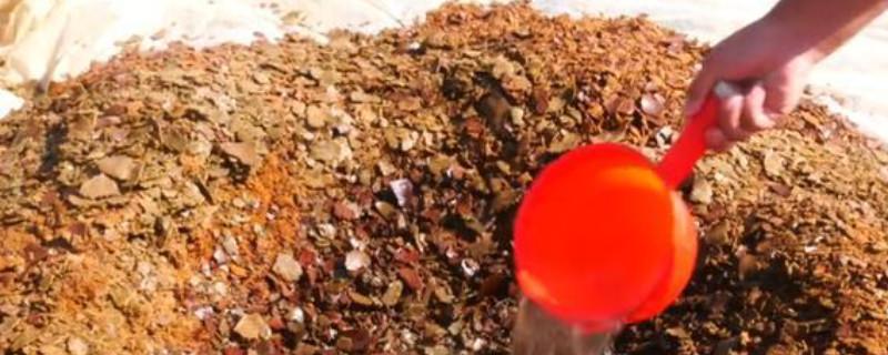 香油渣子怎么给花施肥