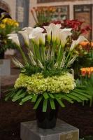 美丽的马蹄莲插花