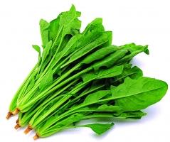 家庭小菜园种植的蔬菜应如何选择