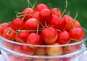 春天孕妇吃什么水果好