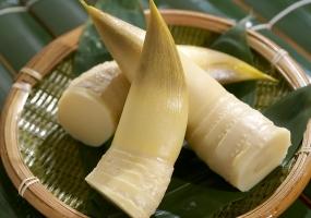 竹笋有毒吗:无毒,可做美味佳肴