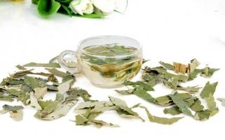荷叶茶的功效与作用:女性经期暂停饮用